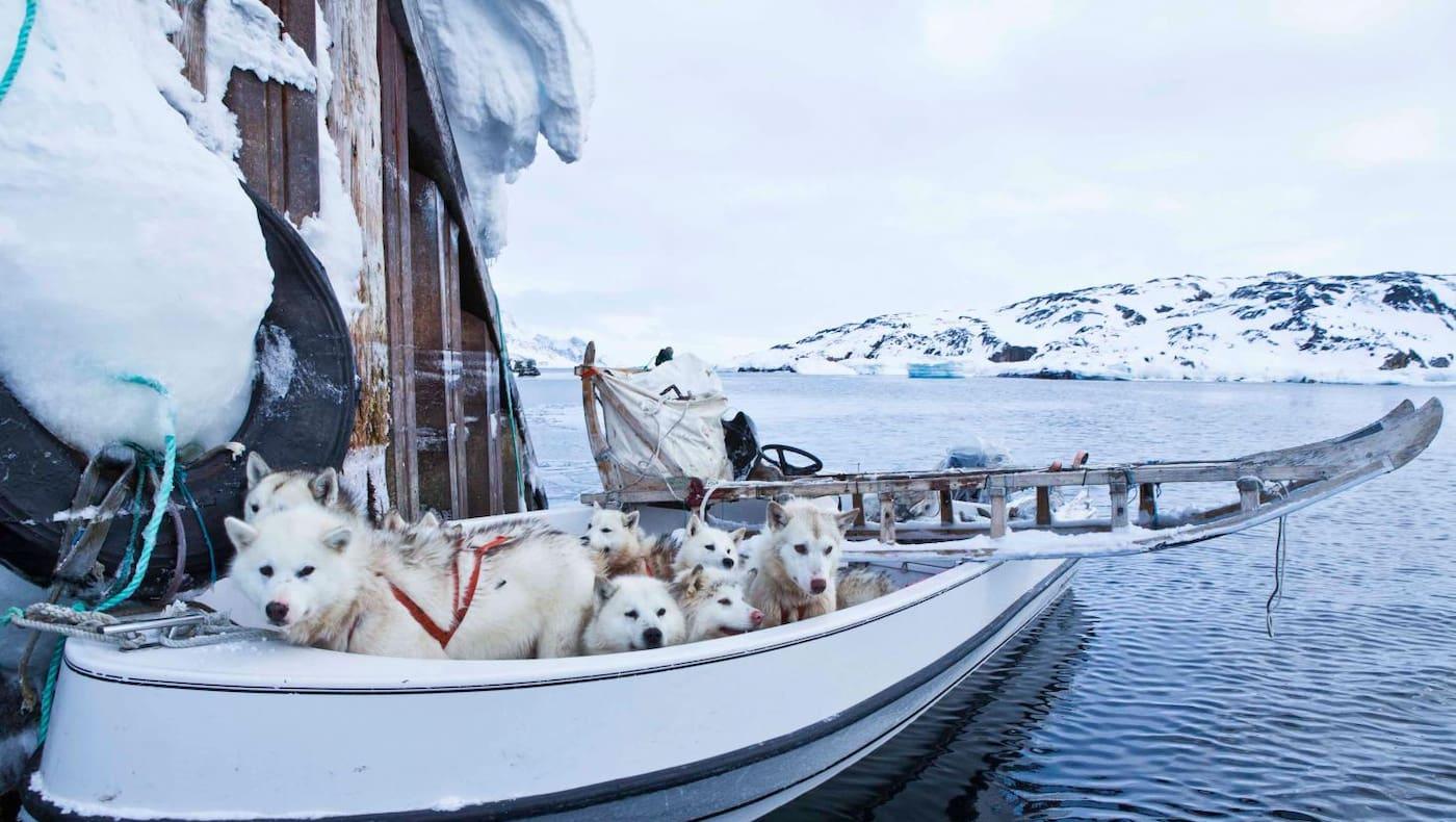 Boot in Grönland
