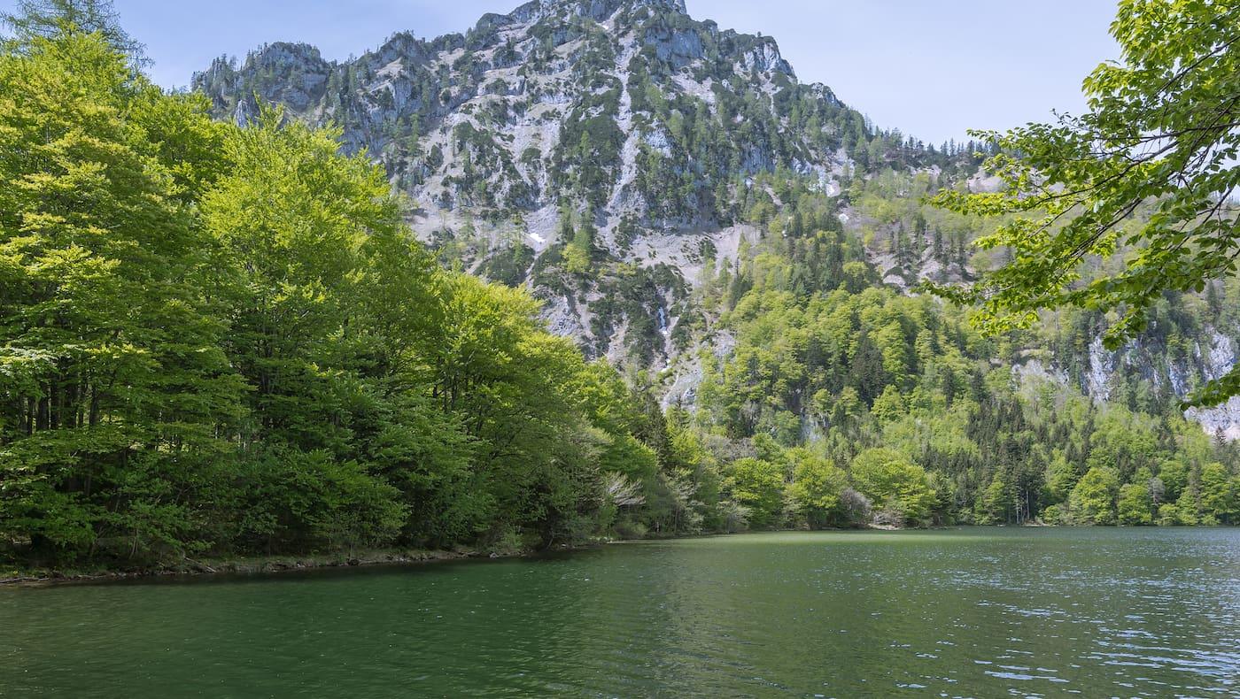 Der Laudachsee in Oberösterreich