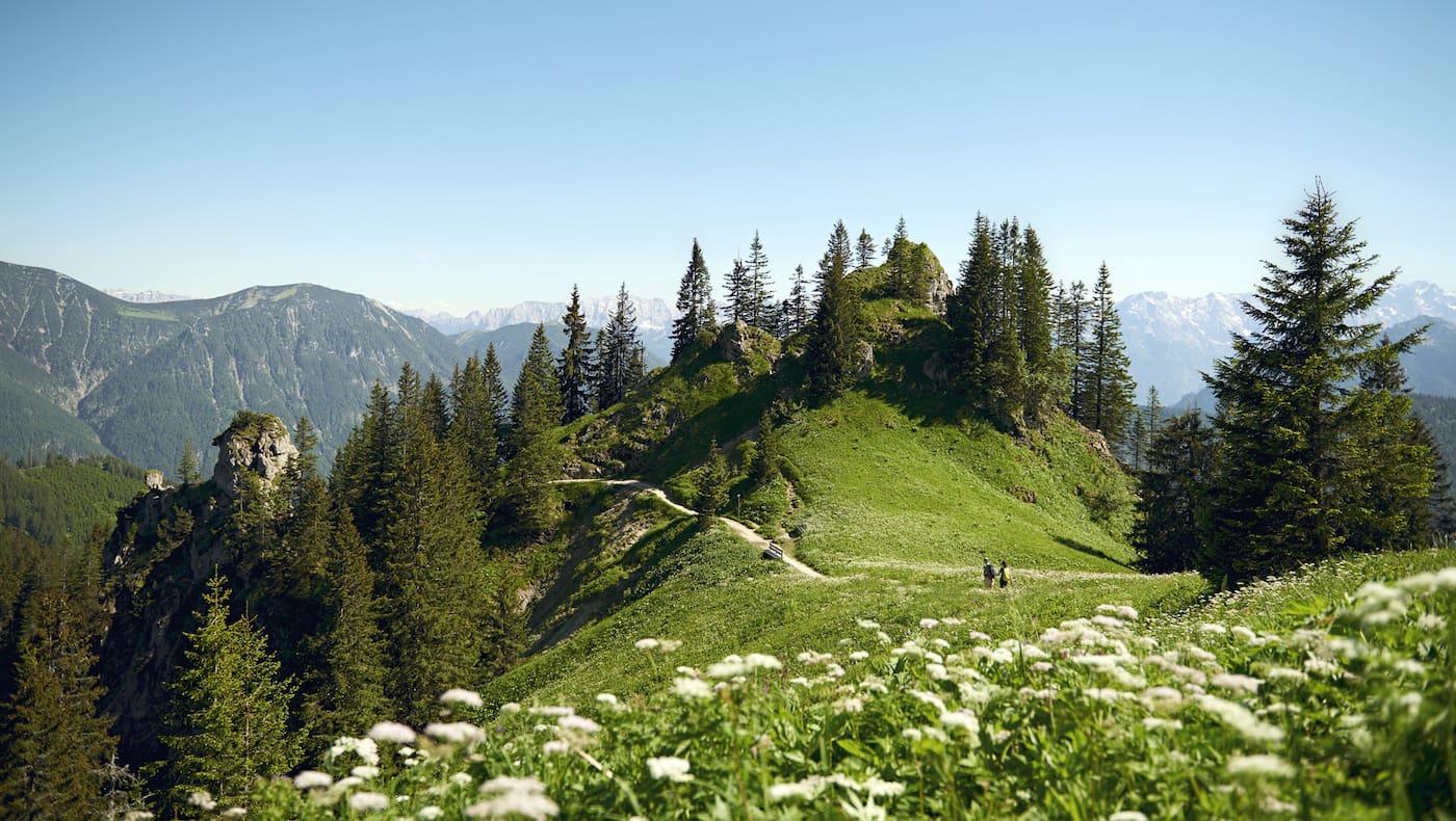Ammergauer Bergwelten