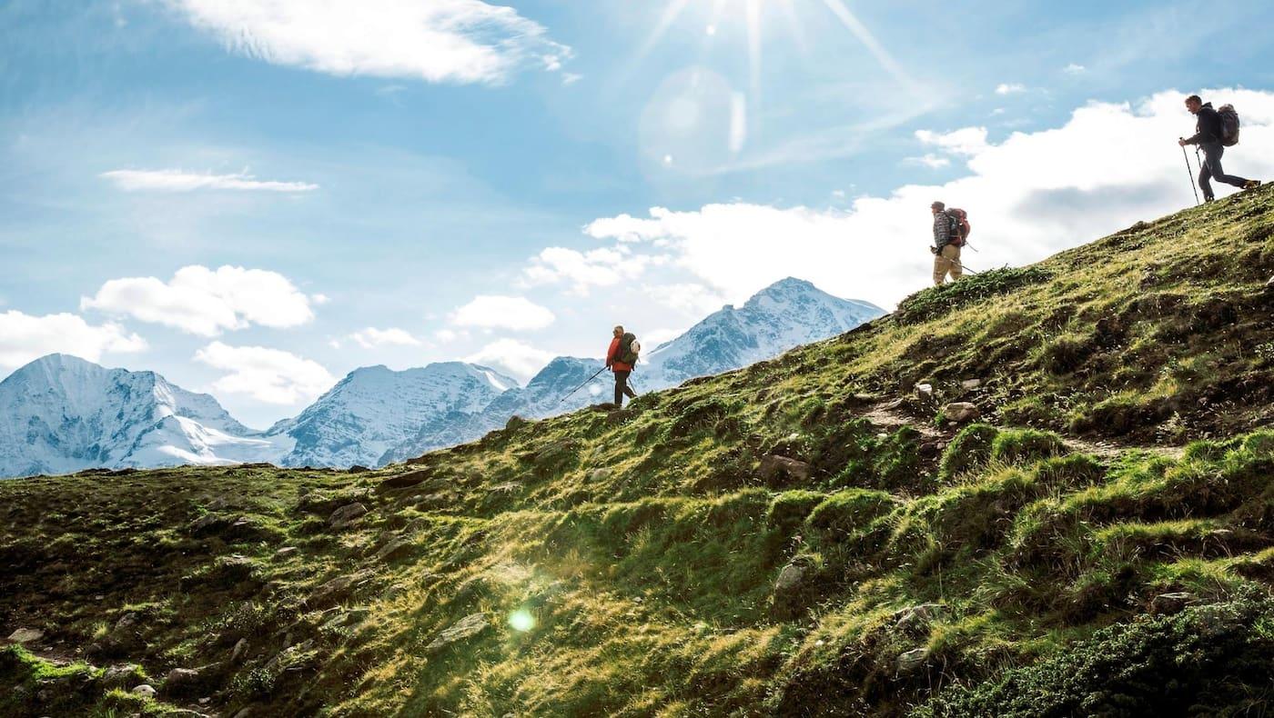 Wanderer auf weiten Almen mit Blick auf den Ortler