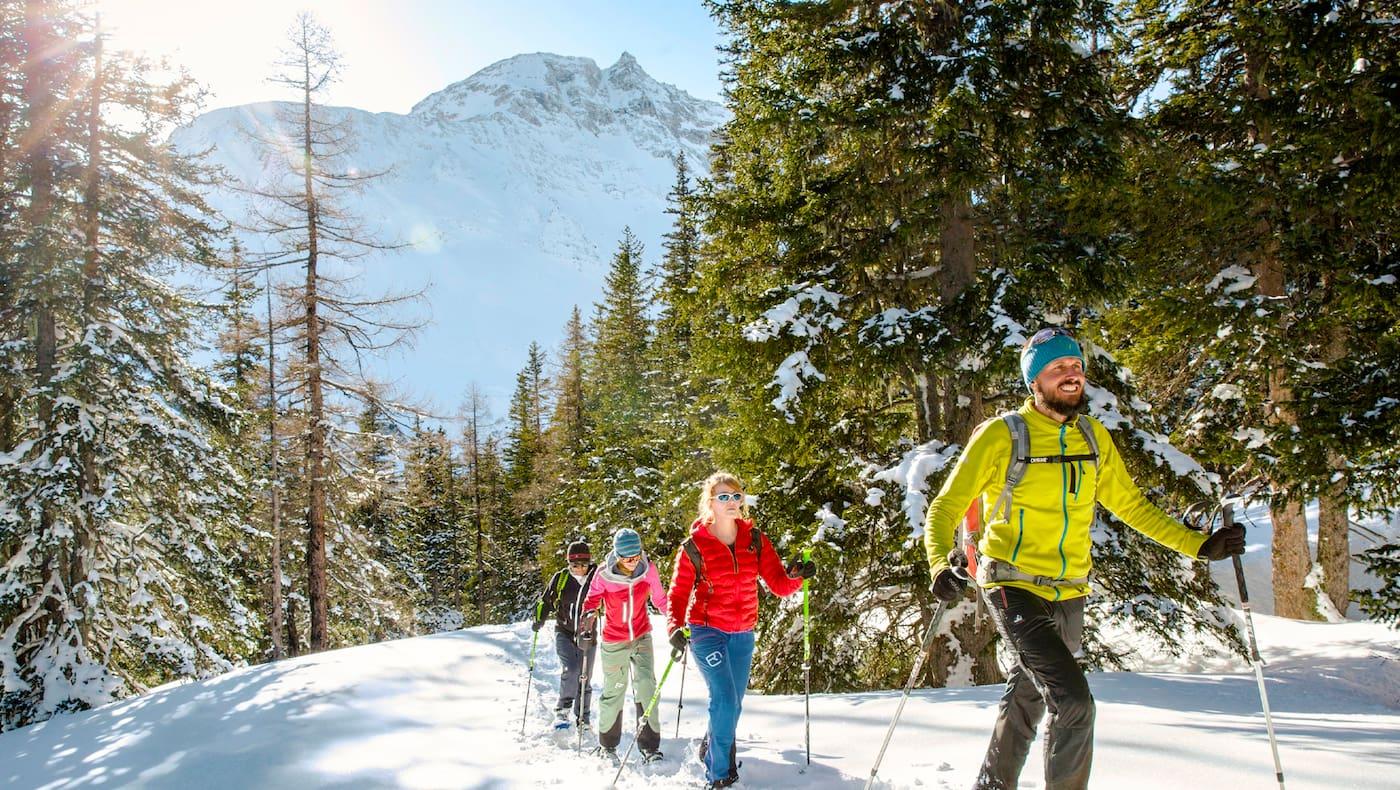 Vier Schneeschuhwanderer am Berg