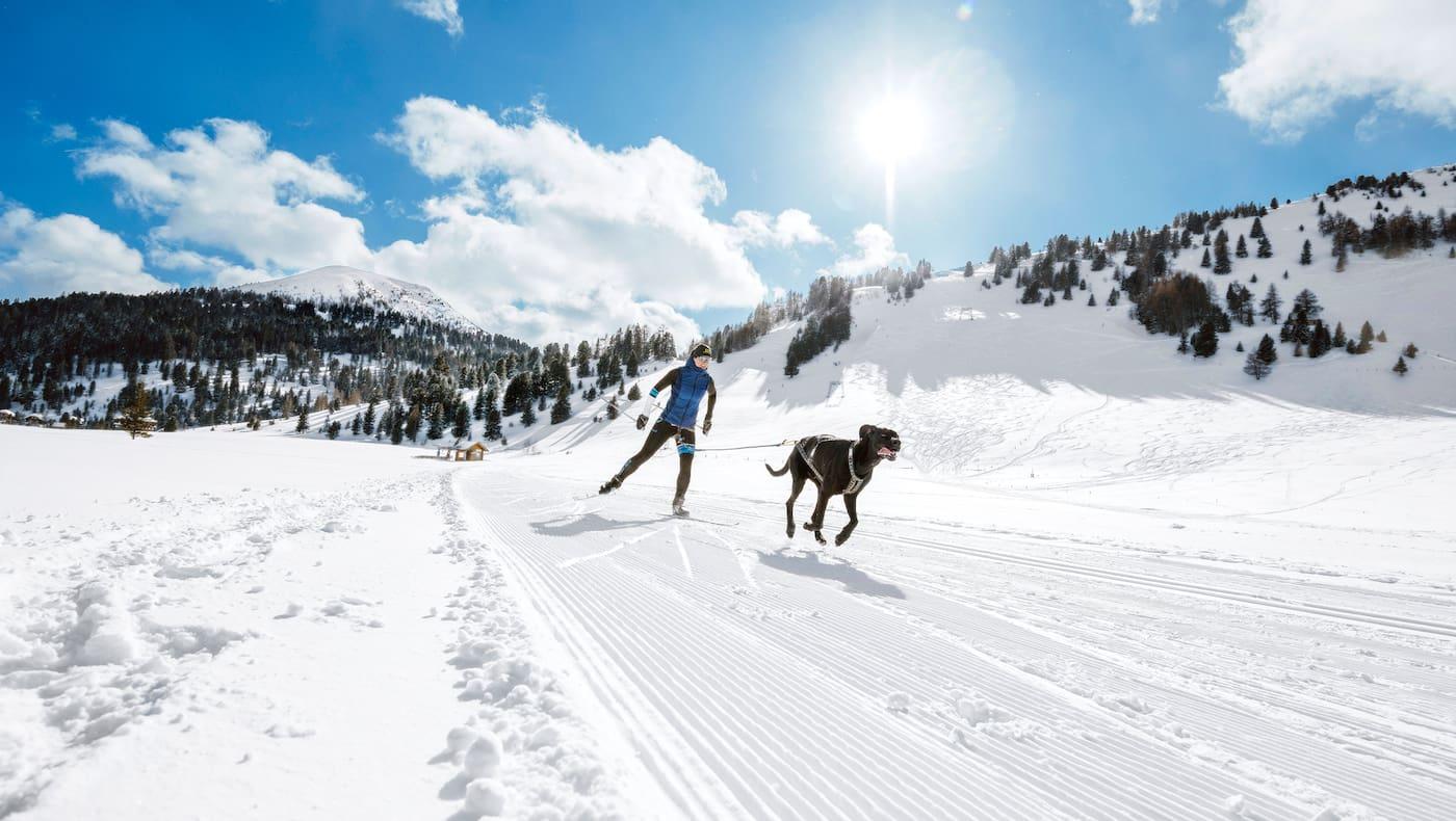 Anna Milazzi und ihr Hund Finn auf der Loipe