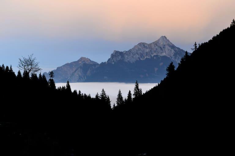 Blick in die Allgäuer Berge: Säuling