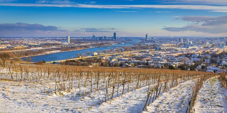 Blick über Wien