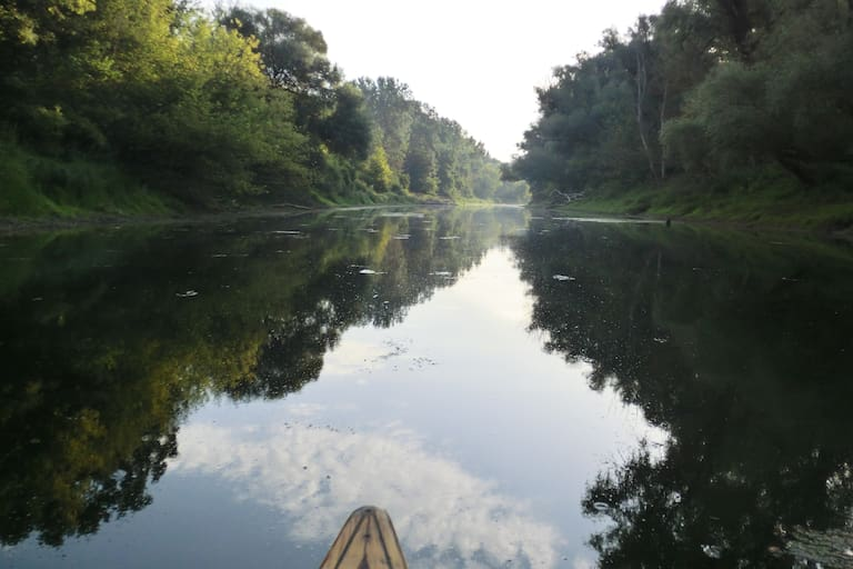 Nationalpark Donau-Auen östlich von Wien