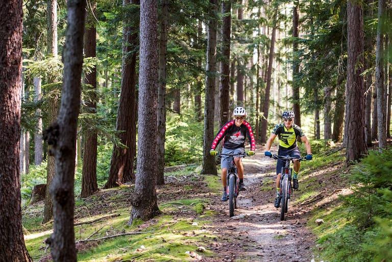 Mountainbike versus E-Bike