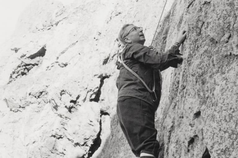 Viktor Frankl Berg und Sinn