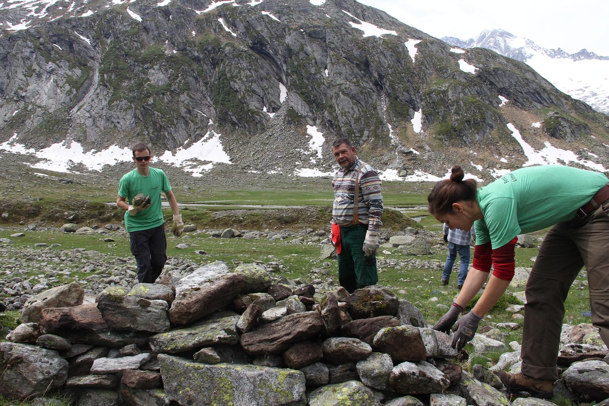 Bergwaldprojekt: Anpacken in der Idylle | Bergwelten