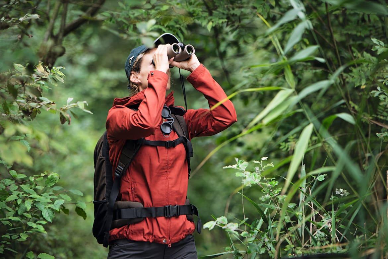Das Fernglas als wertvoller Begleiter auf einer Wanderung im Wald.