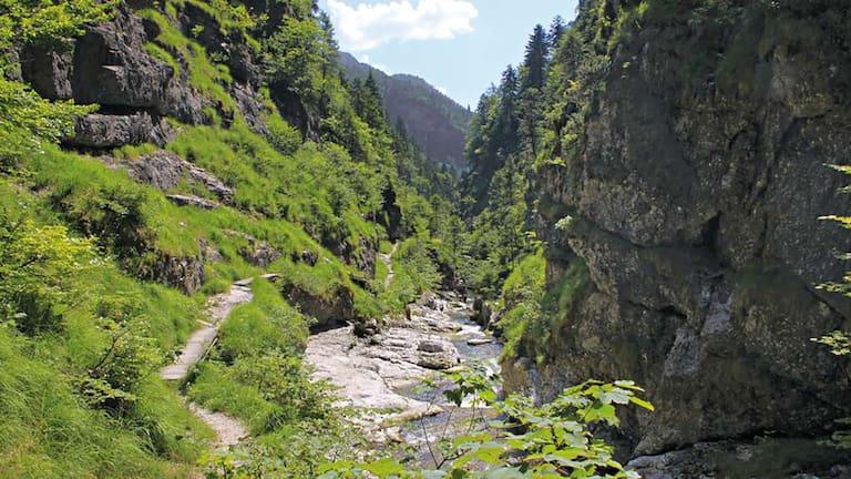 In den Chiemgauer Alpen erwartet dich die familienfreundliche Wanderung durch die Weißbachschlucht.