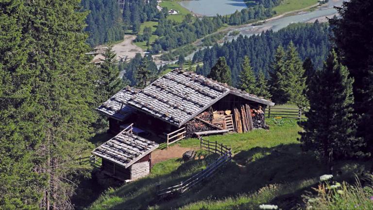 Falbesoner Nockalm – eine gemütliche Wanderung durch die Naturlandschaft.