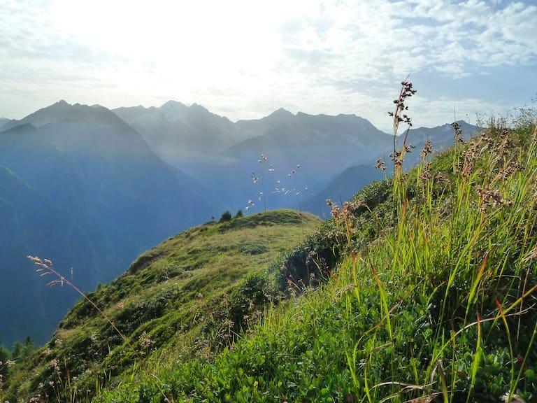 Morgenstimmung am Berg