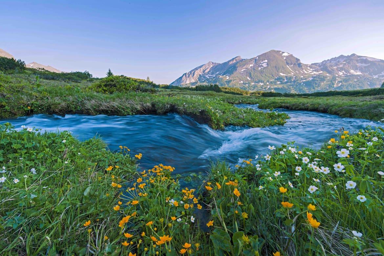 Intakt Ökosysteme wie das Hundsfeldmoor in Salzburgs binden Treibhausgase und wirken daher klimaregulierend.