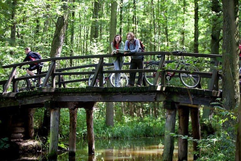 Fahrtwind Brandenburg Radfahren