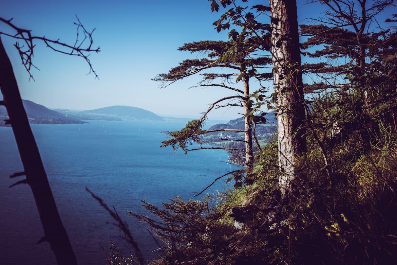 Nach dem ersten Anstieg auf den Schoberstein, der erste schöne Ausblick auf den Attersee