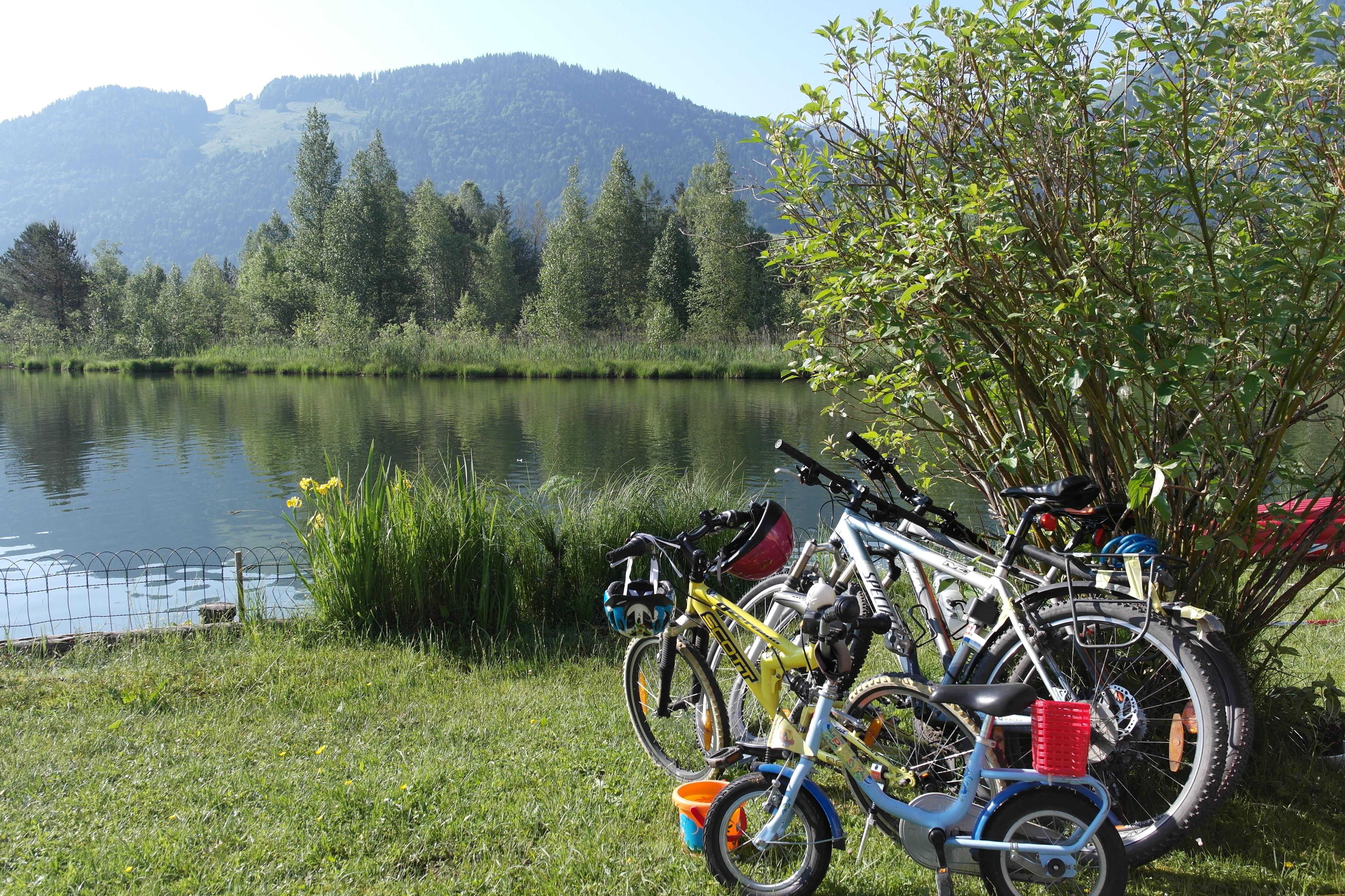 Biken und Wandern in Walchsee (Kaiserwinkl)   Bergwelten