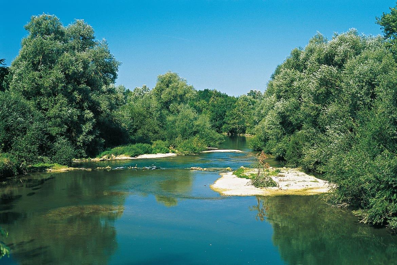 Der natürliche Flusslauf der Saulx