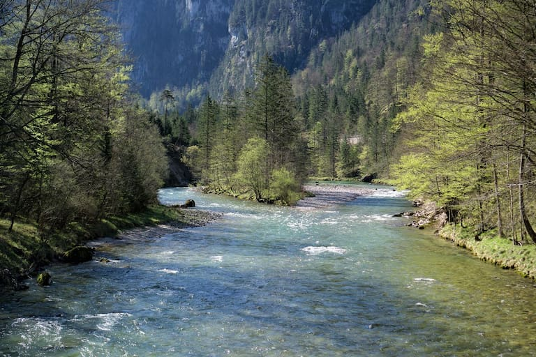 Naturfreunde Wildwasserzentrum Wildalpen
