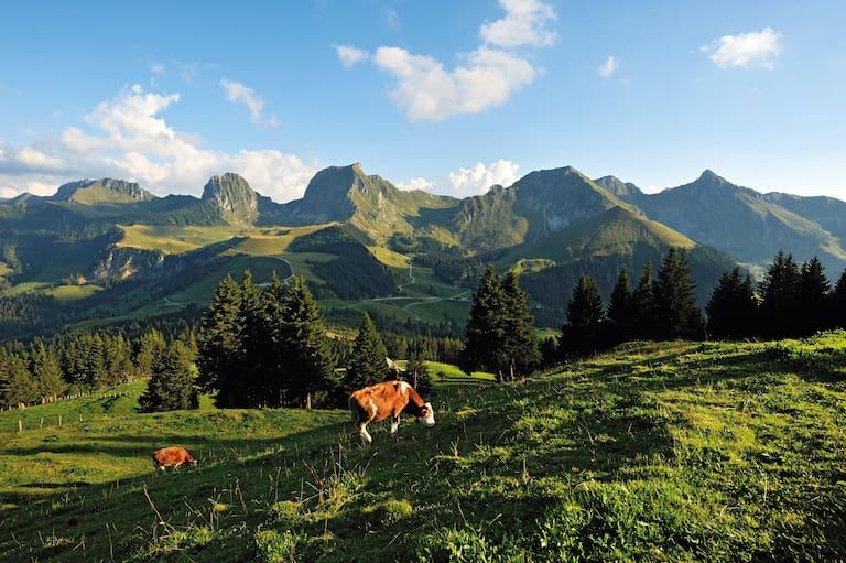 Schweiz Naturpark Gantrisch im Kanton Bern