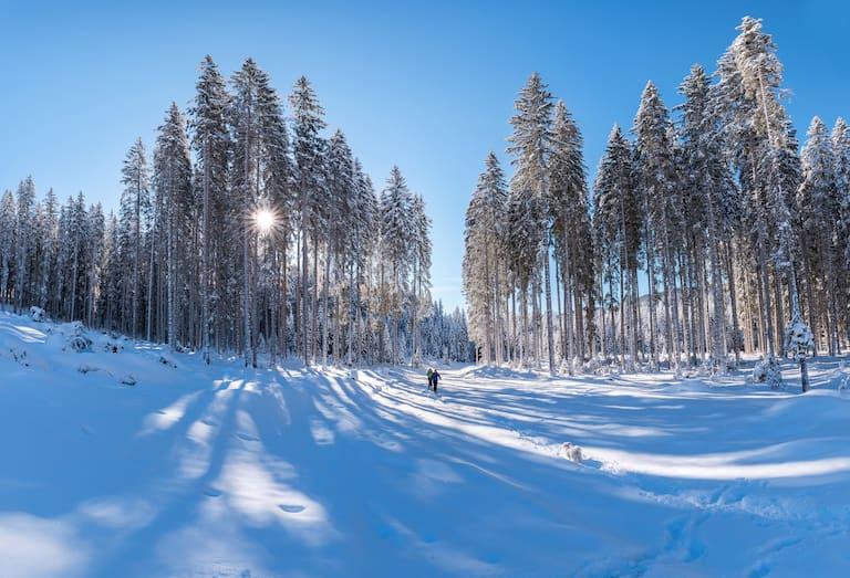 Winterwandern vor schönster Kulisse