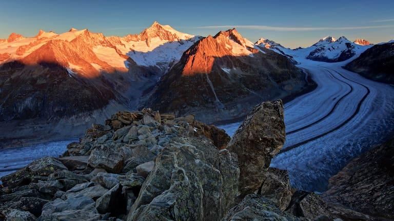 Berner Alpen: Aletschgletscher mit Aletschhorn
