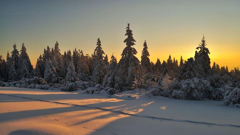 Schwarzwald im Winter: Baiersbronn in Baden-Württemberg