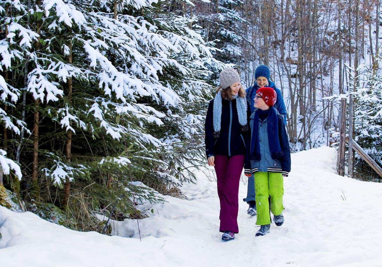 Die Familie wandert durch den Wald zurück zum Ausgangspunkt