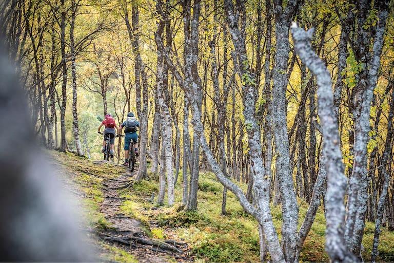 Bikefex Kalender 2021