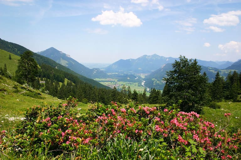 Wandern in den Chiemgauer Alpen: Auf den Breitenstein in Bayern