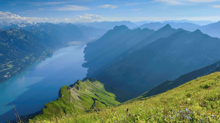 Berner Alpen: Blick auf den Brienzersee im Kanton Bern