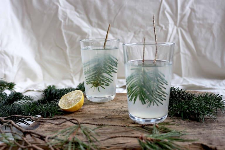 """Die """"Heiße Fichten-Zitrone"""" - ein wohltuendes Getränk in der Erkältungszeit"""