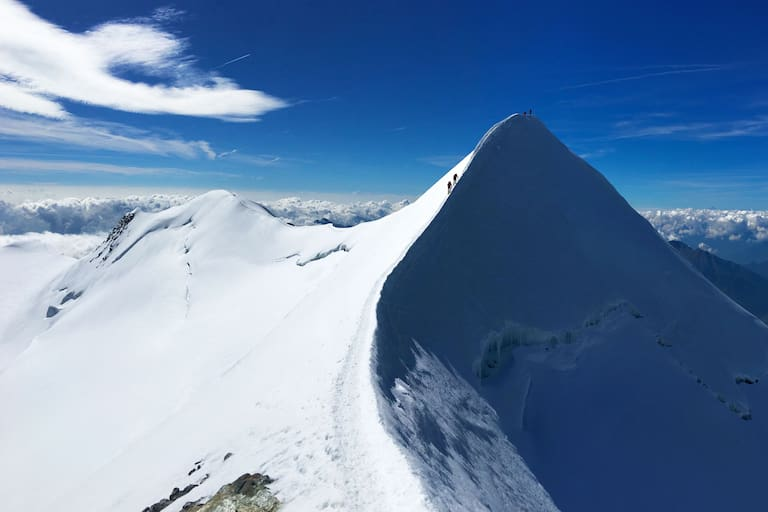 Nordansicht des Castors in den Walliser Alpen mit dem Felikhorn