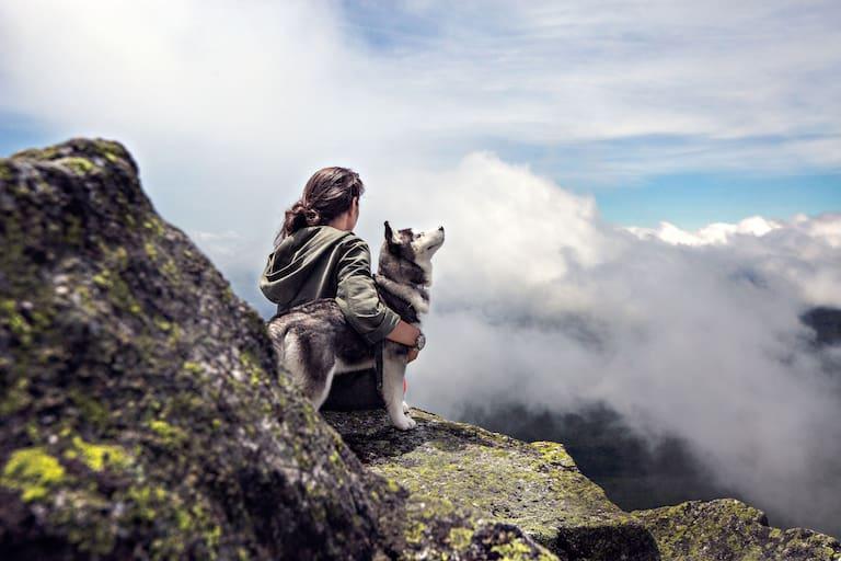 Vierbeiner am Berg: Mit Hund auf der Hütte