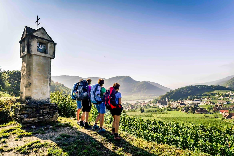 Der Weg ist das Ziel - Weiterwandern an der Donau in Niederösterreich