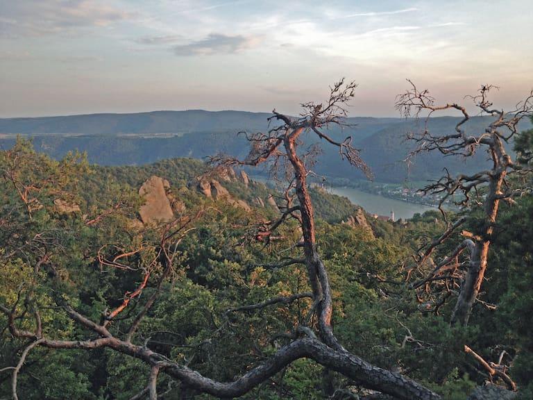 Den Narrenturm erreicht man nur kletternd, dafür wird man mit einem wunderbaren Ausblick belohnt.
