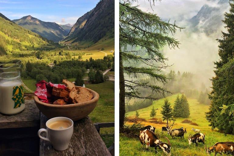 Schule der Alm im Valsertal: Frühstück auf Helgas Alm in Tirol