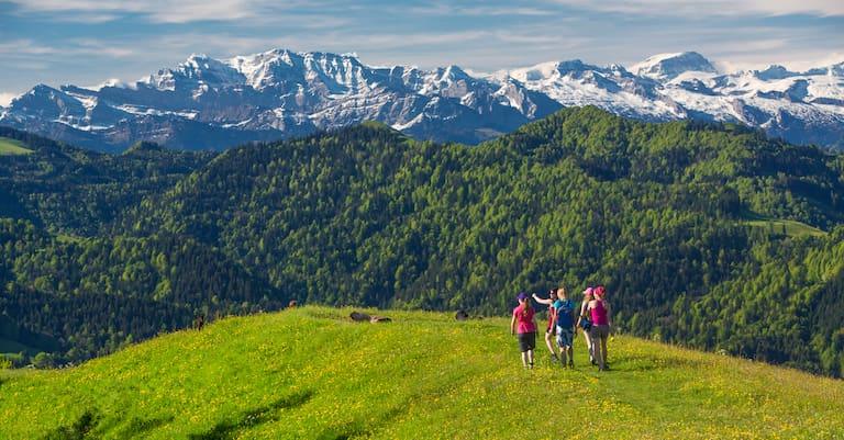 Aussichtsreiches Wandern auf dem Hörnli (1.133 m) vor dem Panorama der Appenzeller Alpen