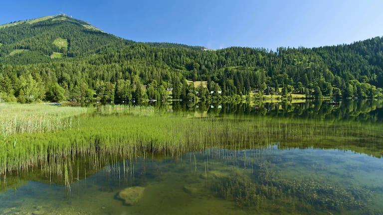 WohlfühlWege: Der Erlaufsee am Fuße der Gemeindealpe