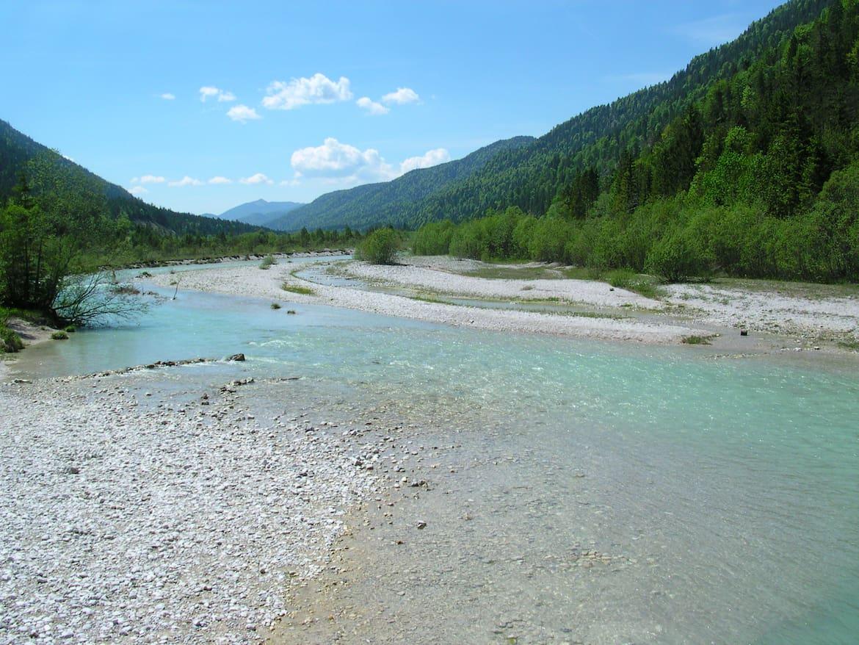 Die Isar - ein echter Wildfluss