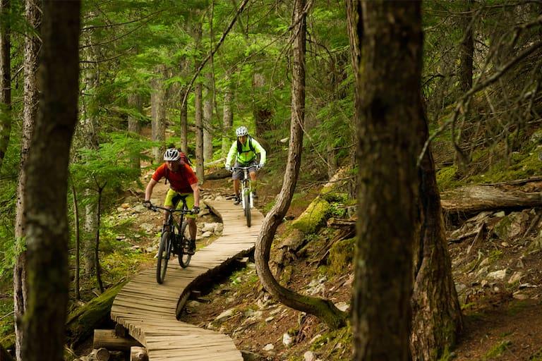 Mountainbiken Forststraßen