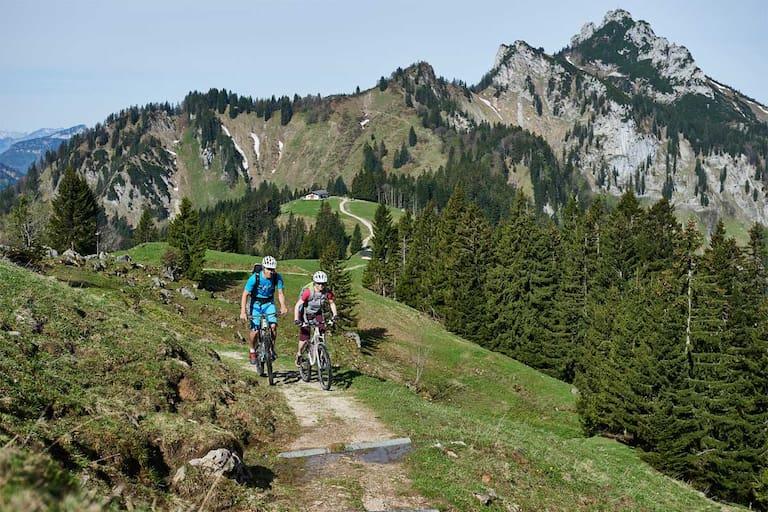 Rachlalm Mountainbike