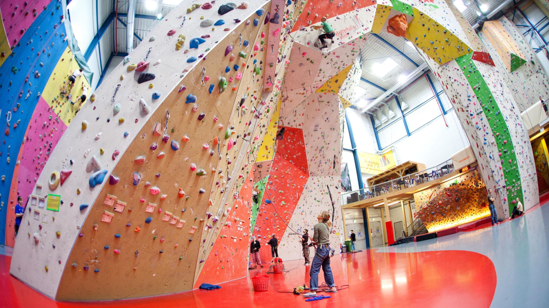 Klettergurt Für Die Halle : Stubai damen klettergurt stella xs m sepia braun amazon