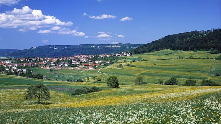 Klippeneck-Runde: Hausen ob Verena auf der Schwäbischen Alb in Baden-Württemberg