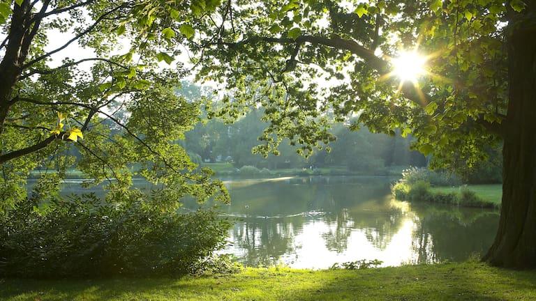 Morgensonne überm Maschteich im Maschpark in Hannover