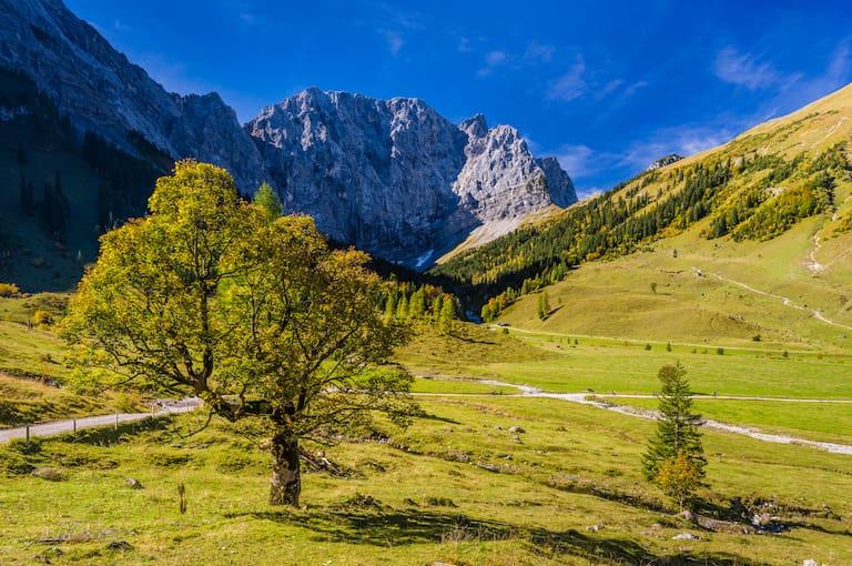 Alpenpark Karwendel in Tirol