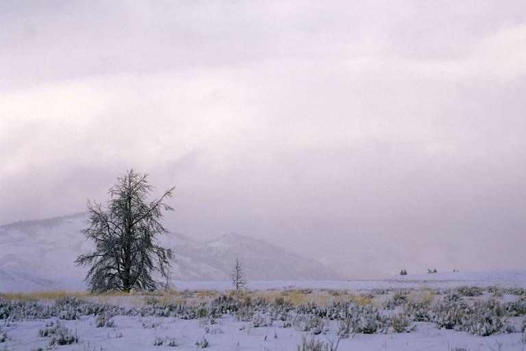 Den Südalpen und dem Alpenhauptkamm steht am Wochenende ein ernstzunehmender Wintereinbruch bevor.