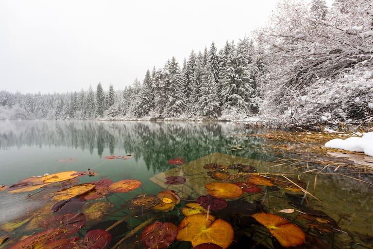 Schnee im Herbst: Das kommende Wochenende bietet einen turbulenten Wettermix