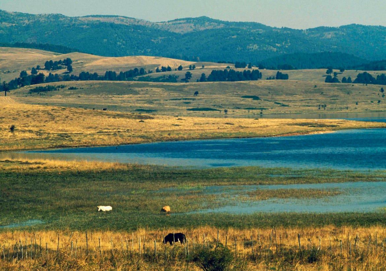 Der Nationalpark Sila