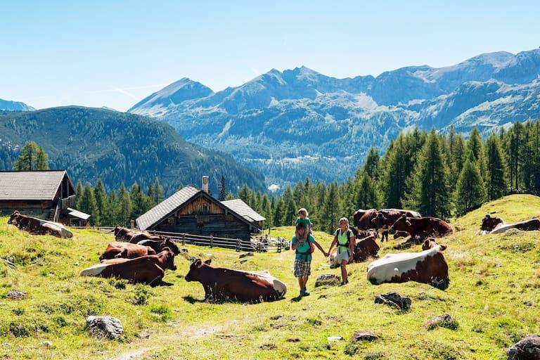 Berghütten und Almen: Ein Sommer-Paradies für Kinder