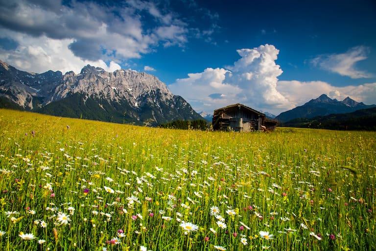 Alpenwelt Karwendel in Bayern